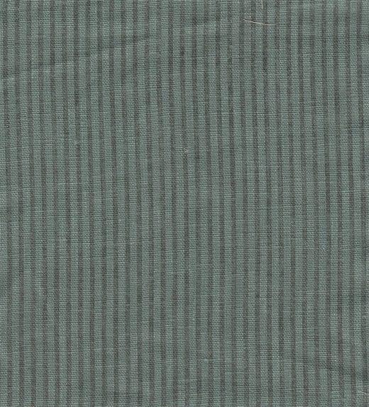 Ginger Stripe Bluebell
